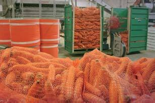 Produce Nets46x59cm Red      (beet / swede) Packaging > Produce Nets