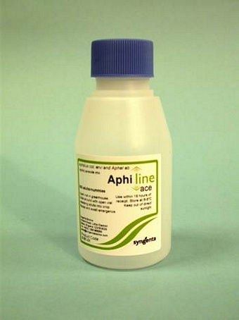 Aphiline ACE mix (Aphid control) 500/pack Biological Control > Aphid Controls